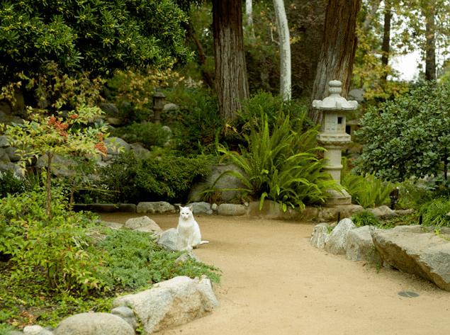 Storrier Stearns Garden2