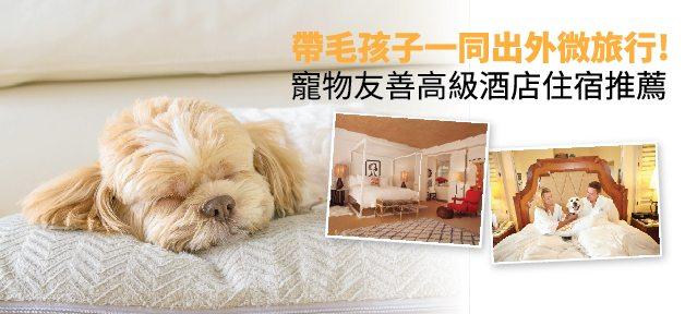 PETS FRIENDLY HOTELS 寵物友善高級酒店住宿推薦
