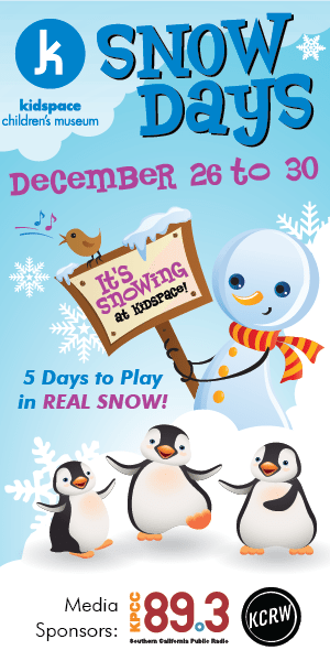 2015-Snow-Days-Banner-Ads_300x600