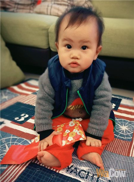 charming baby v304
