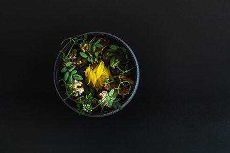 destroyer-sunchoke-dish