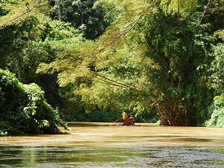 jamaica-rafting-