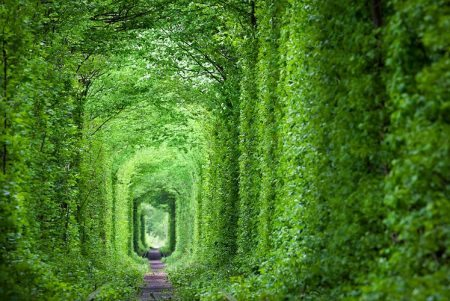 The-Tunnel-of-Love-Ukraine