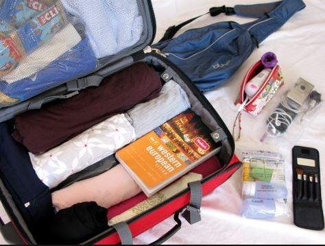organized luggage 3 squawkfox