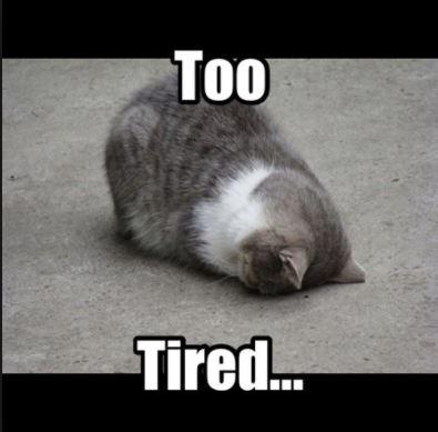 tired meme 1 girls ask guys