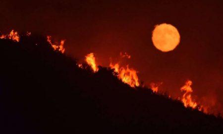 CA wildfire 2017 2 AP
